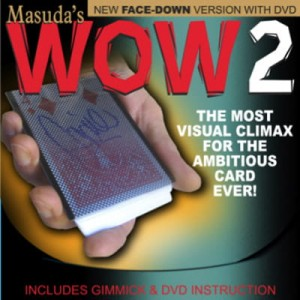 WOW 2.0 (Face Down Version and DVD) by Masuda